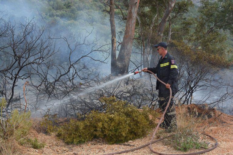 Σε ύφεση, αλλά με αναζωπυρώσεις, η πυρκαγιά στη Σητεία   tanea.gr
