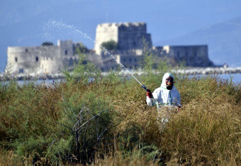 Δυο νέα κρούσματα του ιού του Δυτικού Νείλου στην Κεντρική Μακεδονία | tanea.gr