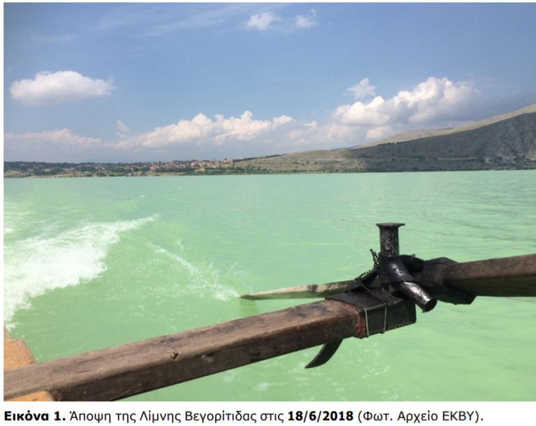 Φλώρινα: Απαγορεύεται προληπτικά η κολύμβηση στη Βεγορίτιδα   tanea.gr