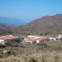 Ανησυχία για την κατάσταση στο Ελληνικό Κέντρο Περίθαλψης Αγριων Ζώων από 11 οργανώσεις | tanea.gr