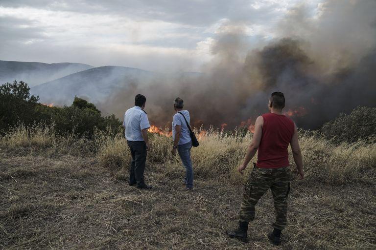 Υπό μερικό έλεγχο η φωτιά στο Σουφλί   tanea.gr