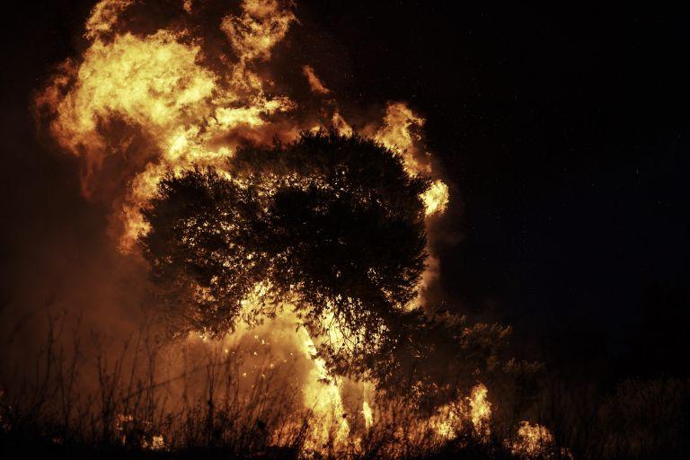 Εσβησαν την πυρκαγιά που εκδηλώθηκε στη Νέα Μάκρη | tanea.gr