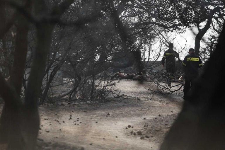 Βρέθηκαν 26 νεκροί σε χωράφι στην Αργυρά Ακτή | tanea.gr