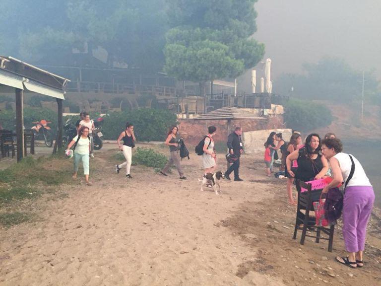 Νέο συγκλονιστικό βίντεο με τη διάσωση παιδιών από το Μάτι | tanea.gr