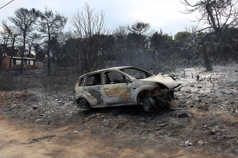 Πυρκαγιά στο Μάτι : Η τραγική ιστορία της ακτινολόγου Βασιλικής Χερουβείμ που κάηκε μαζί με τα παιδιά της | tanea.gr