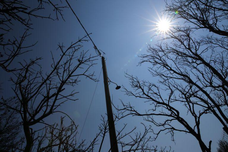 Προσαρμογή σχεδιασμού δασοπροστασίας ζητούν οι περιβαλλοντικές οργανώσεις   tanea.gr