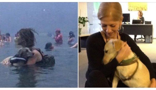 Μάτι : Συγκινεί η ιστορία της Κατερίνας και του τρίποδου σκύλου της   tanea.gr