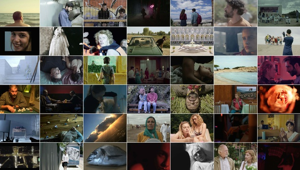 «Νύχτες Πρεμιέρας»: 47 ταινίες μικρού μήκους διεκδικούν το βραβείο | tanea.gr