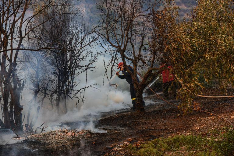 Αισιοδοξία για την κατάσβεση της φωτιάς στην Εύβοια   tanea.gr