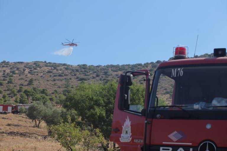 Διερευνούν τα αίτια δύο πυρκαγιών στην Κερατέα | tanea.gr