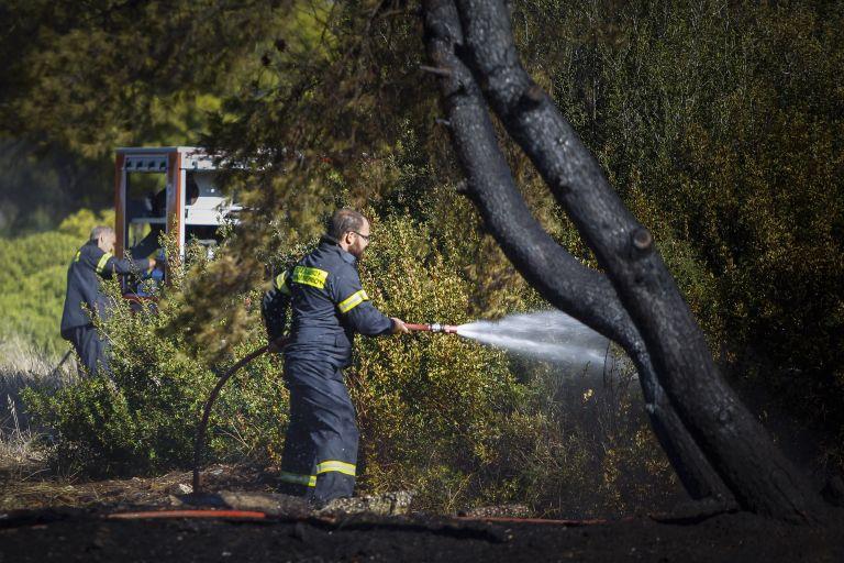 Πυρκαγιά σε δασική έκταση στο Ρέθυμνο | tanea.gr