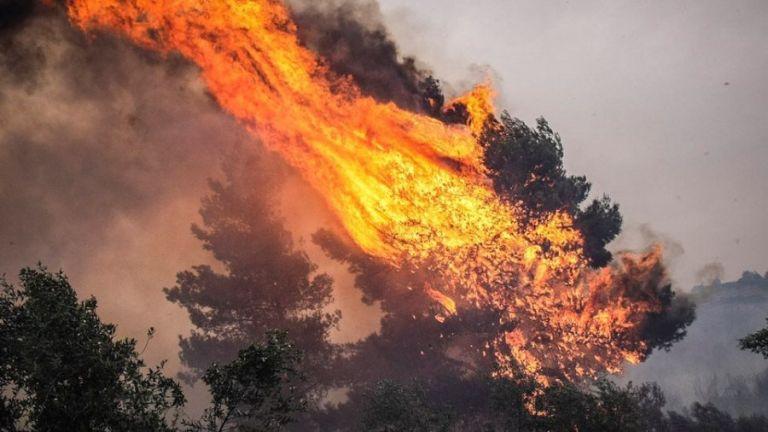 Πολύ υψηλός κίνδυνος πυρκαγιάς σε Αττική – Εύβοια και τη Δευτέρα | tanea.gr