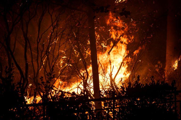 Αξιωματικός Τροχαίας: Κανείς δεν πίστευε ότι η φωτιά θα πέρναγε τη Μαραθώνος | tanea.gr