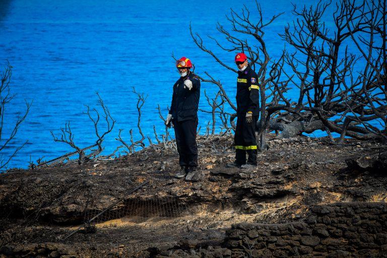 Πυροσβεστική : Στους 87 οι νεκροί από τις πυρκαγιές και ένας αγνοούμενος | tanea.gr