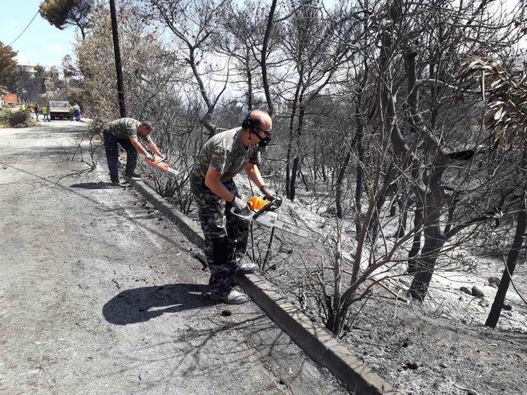 Κλιμάκιο του ΔΣΑ στον Μαραθώνα για τις αιτήσεις των πυρόπληκτων | tanea.gr