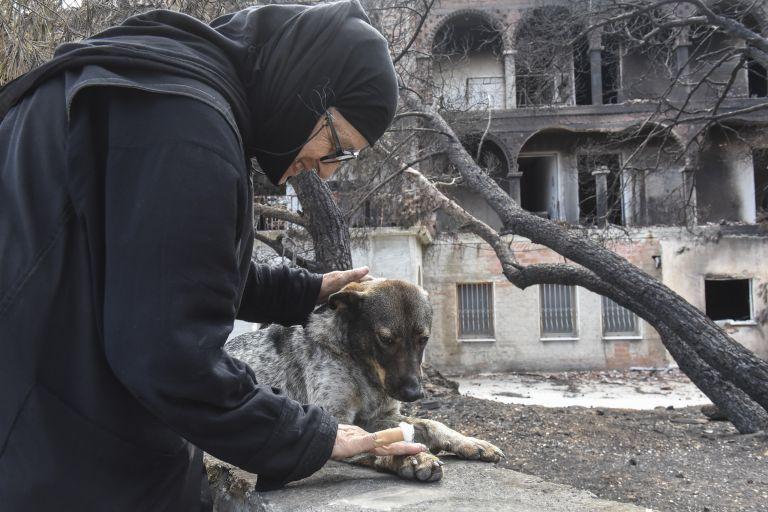 Η Βουλή συνδράμει στην αποκατάσταση του Λύρειου Παιδικού Ιδρύματος | tanea.gr