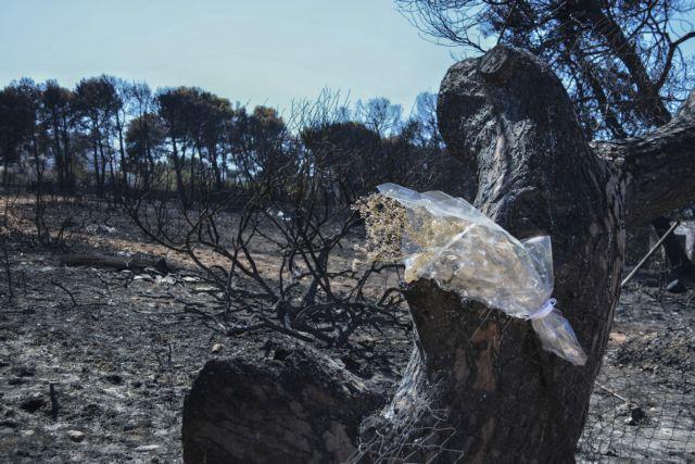 Φονική πυρκαγιά στο Μάτι: Υπέκυψε 95χρονη στο Θριάσιο Νοσοκομείο | tanea.gr