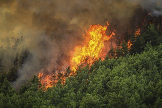 Μαίνεται φωτιά στα Χανιά | tanea.gr