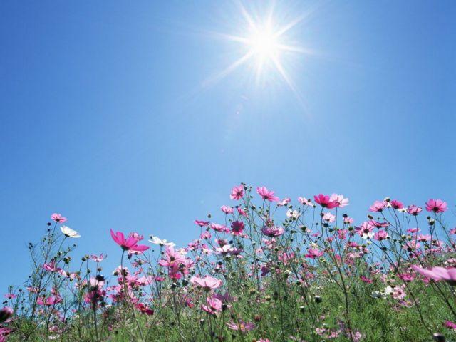 Καιρός : Επιστρέφει το καλοκαίρι την Πέμπτη | tanea.gr