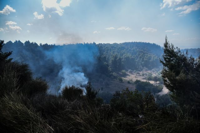 Περιφερειάρχης Δ.Ελλάδας: Ζητά απαντήσεις για τα αίτια των πυρκαγιών | tanea.gr