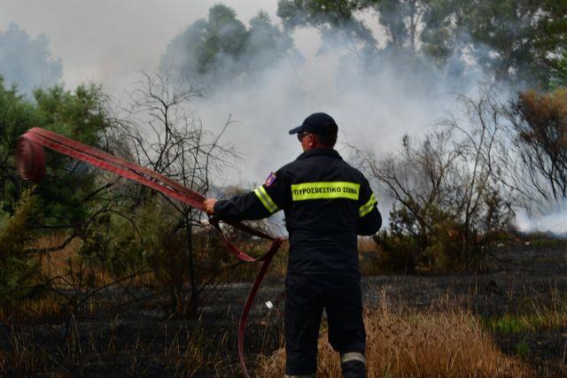 Ξέσπασε πυρκαγιά στη Βραυρώνα Αττικής | tanea.gr