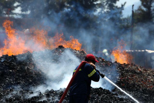 Υπό έλεγχο η πυρκαγιά στη Ζάκυνθο   tanea.gr