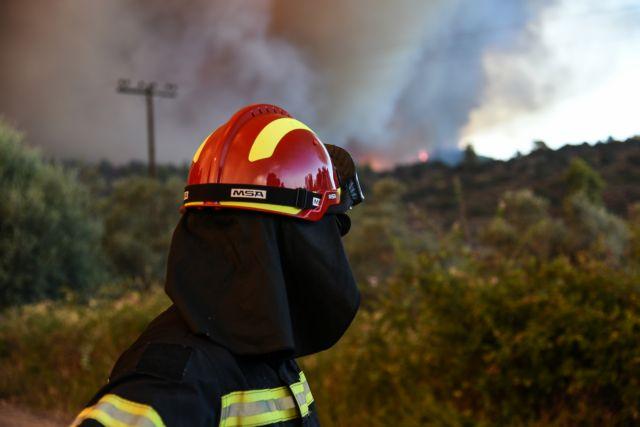 Σε ύφεση η πυρκαγιά στις Ροβιές Ευβοίας | tanea.gr