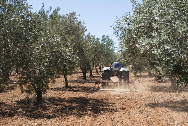 Καταπλακώθηκαν από τα τρακτέρ τους – Νεκροί οι δυο αγρότες   tanea.gr