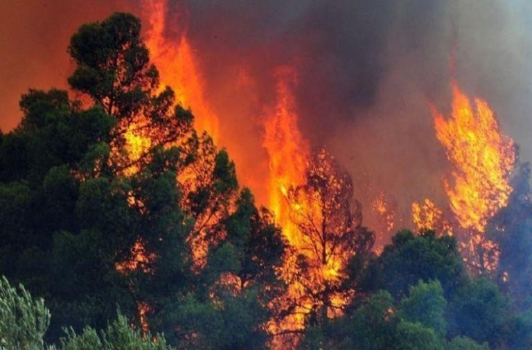 Φωτιά : Συναγερμός επιπέδου 4 και απαγόρευση κυκλοφορίας   tanea.gr