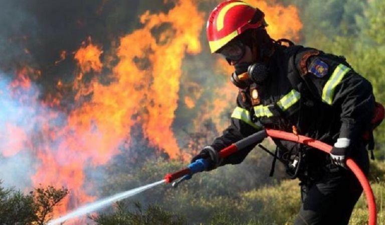 Υψηλός κίνδυνος πυρκαγιάς – Δείτε σε ποιες περιοχές (χάρτης) | tanea.gr