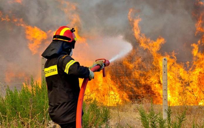 Πυρκαγιά στη Νέα Μάκρη   tanea.gr