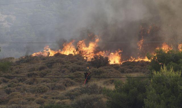 Υπό έλεγχο η πυρκαγιά στην Κερατέα   tanea.gr