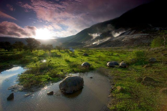 Μια «μείζων μεταμόρφωση» απειλεί τα οικοσυστήματα της Γης | tanea.gr