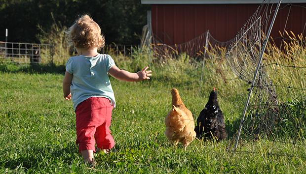Για πρώτη φορά σε αγρόκτημα με το παιδί σας | tanea.gr