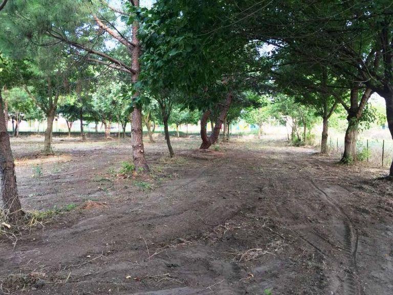 Νέος χώρος άθλησης και αναψυχής στο Ριζαριό   tanea.gr