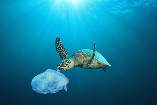 «Σωτήριο» το αυτοδιασπώμενο πλαστικό για το θαλάσσιο περιβάλλον | tanea.gr