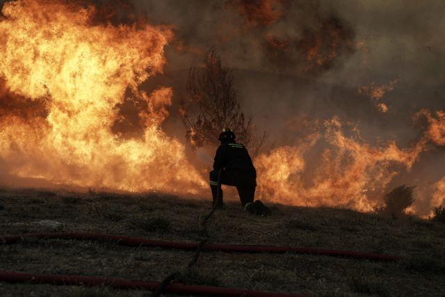 Φωτιά ξέσπασε στην Αρκαδία | tanea.gr