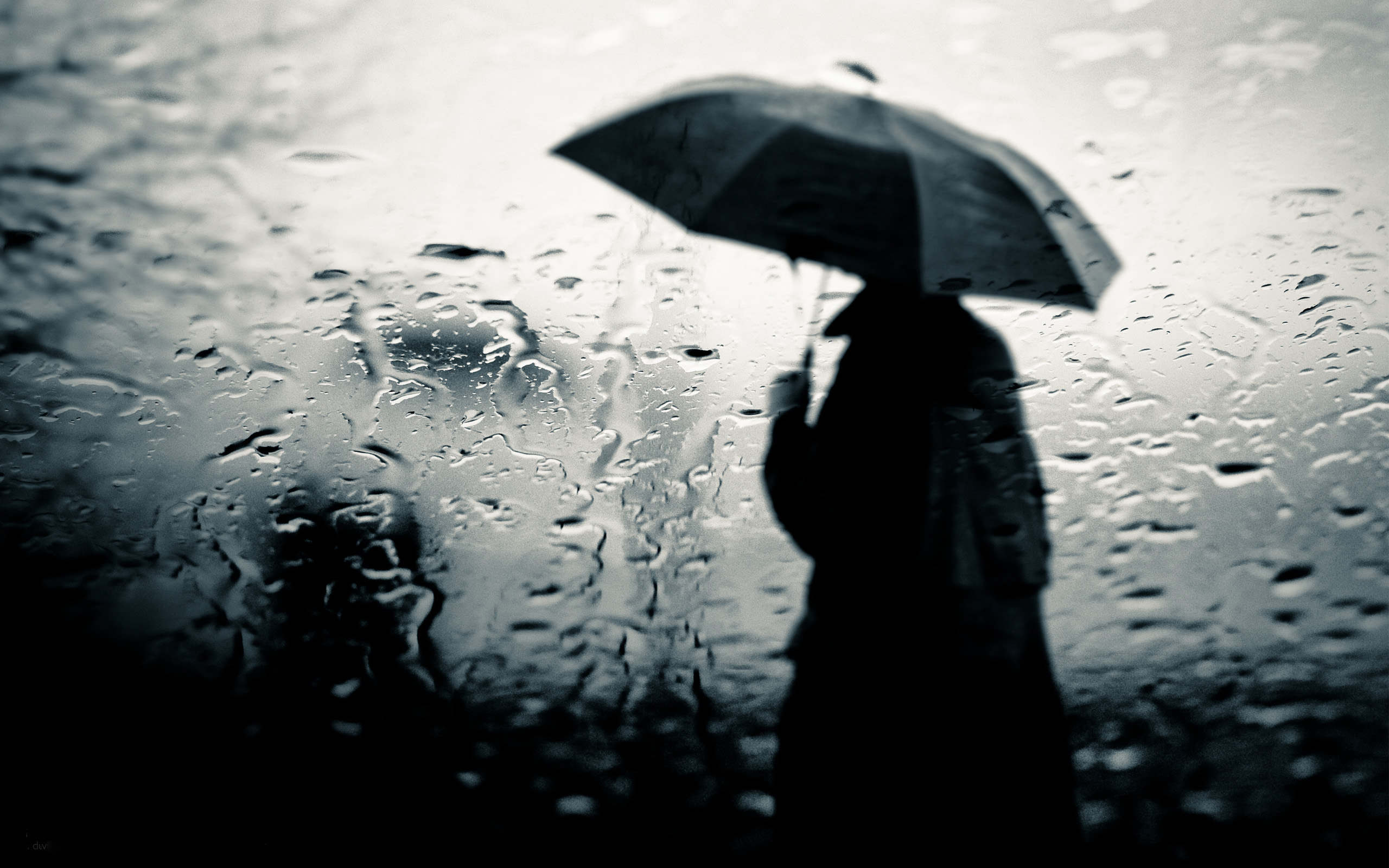 sad rainy weather images - HD 2560×1600