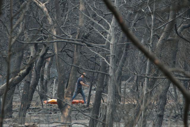 Φονική πυρκαγιά στο Μάτι : Τι αποκαλύπτει το πόρισμα Λιότσου | tanea.gr