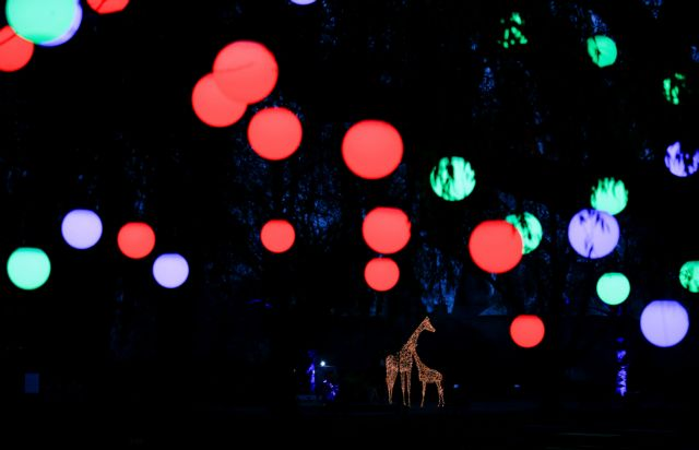 Τα γιορτινά του έβαλε και ο ζωολογικός κήπος του Λονδίνου   tanea.gr