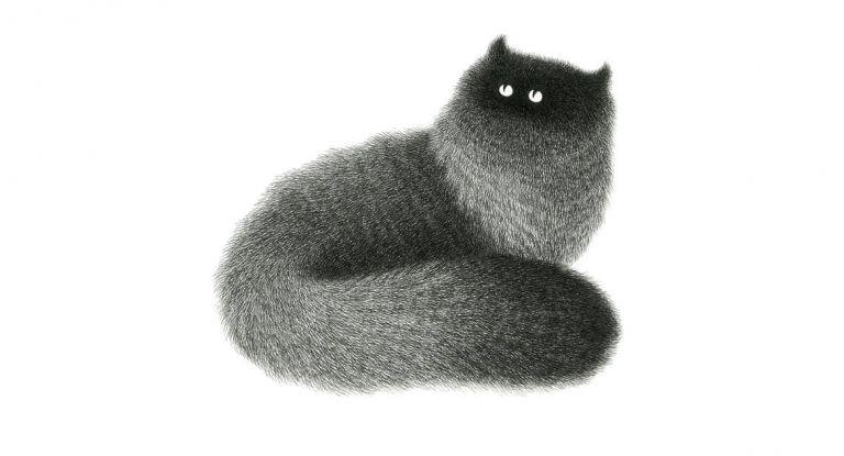 Εντυπωσιάζουν οι χνουδωτές μαύρες γάτες του Kamwei Fong   tanea.gr