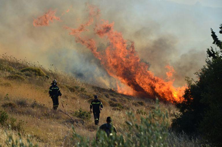 Σε εξέλιξη πυρκαγιά στη Νεμέα Κορινθίας   tanea.gr