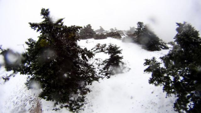 Στα λευκά η Πάρνηθα - Που θα χιονίσει τις επόμενες μέρες | tanea.gr