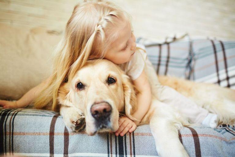 Περισσότερα κατοικίδια, λιγότερες παιδικές αλλεργίες | tanea.gr
