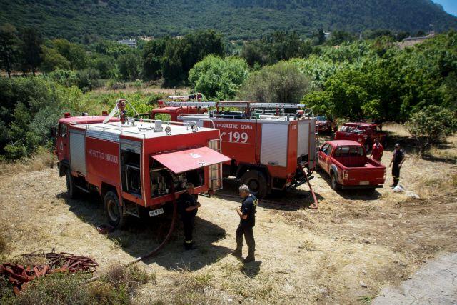 Πύργος: Φωτιά καίει καλαμιές κοντά στη λίμνη Καϊάφα | tanea.gr