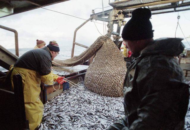 Γάλλοι ψαράδες διώχνουν τα δελφίνια από τα δίχτυα τους με ειδική συσκευή | tanea.gr
