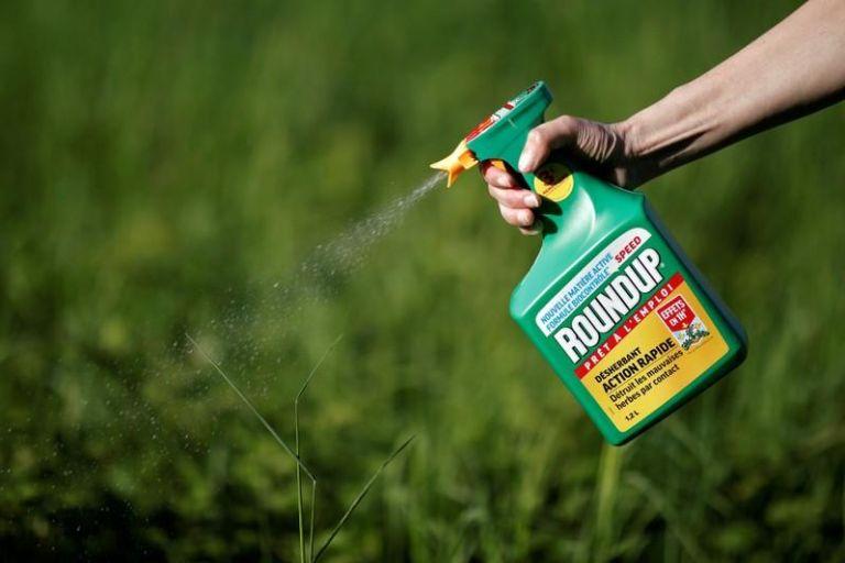 Ενας 78χρονος «τσάκισε» την Monsanto - Τεράστια αποζημίωση για το... Roundup   tanea.gr