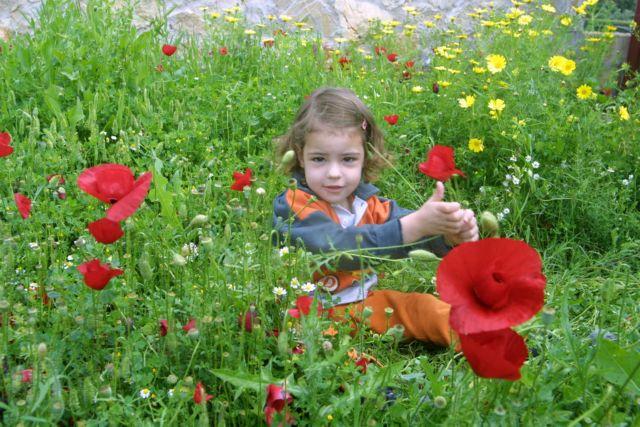 Πως θα προστατέψεις το παιδί σου από τις αλλεργίες της γύρης | tanea.gr