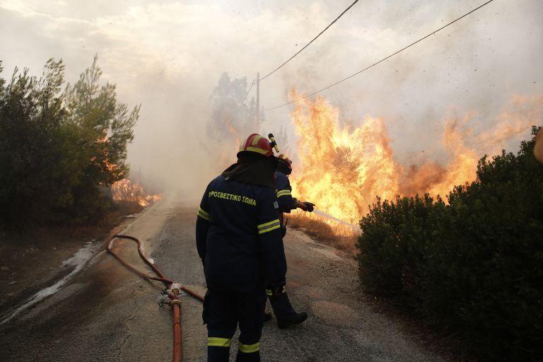 Πρόεδρος πυροσβεστών: Δεν έχω δει μελέτη για το τι πήγε στραβά στο Μάτι | tanea.gr