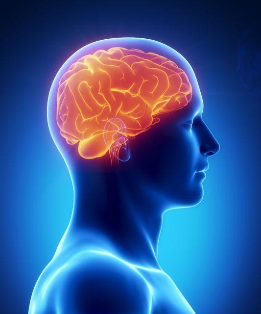 Πώς η πρωτεΐνη προστατεύει τον εγκέφαλο όταν υπάρχει φλεγμονή | tanea.gr